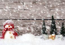 Schneemann im Wald Schneefall