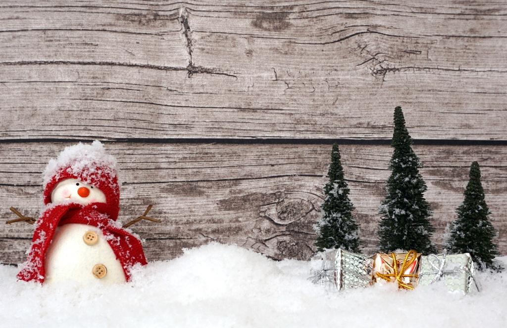 Ein Schneemann steht im Wald