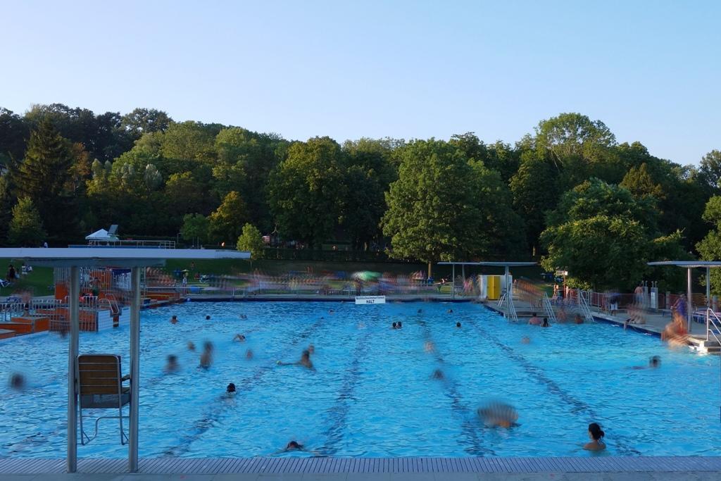 Schwimmbad, Schwimmbecken