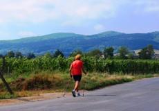 Senioren Nordic Walking