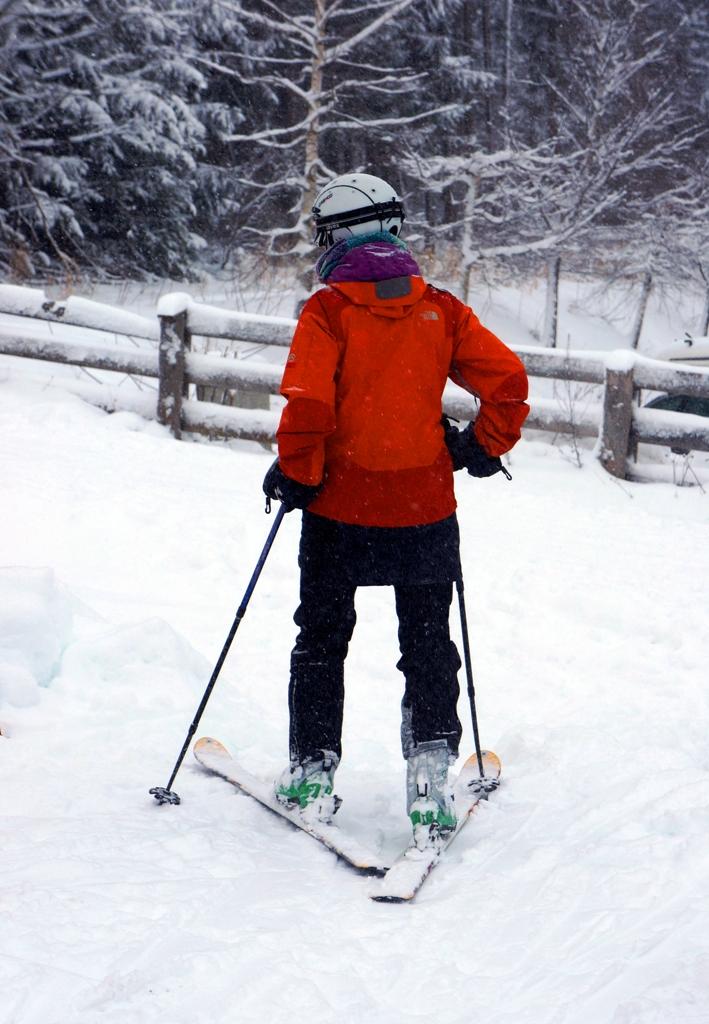 Skifahrer 3