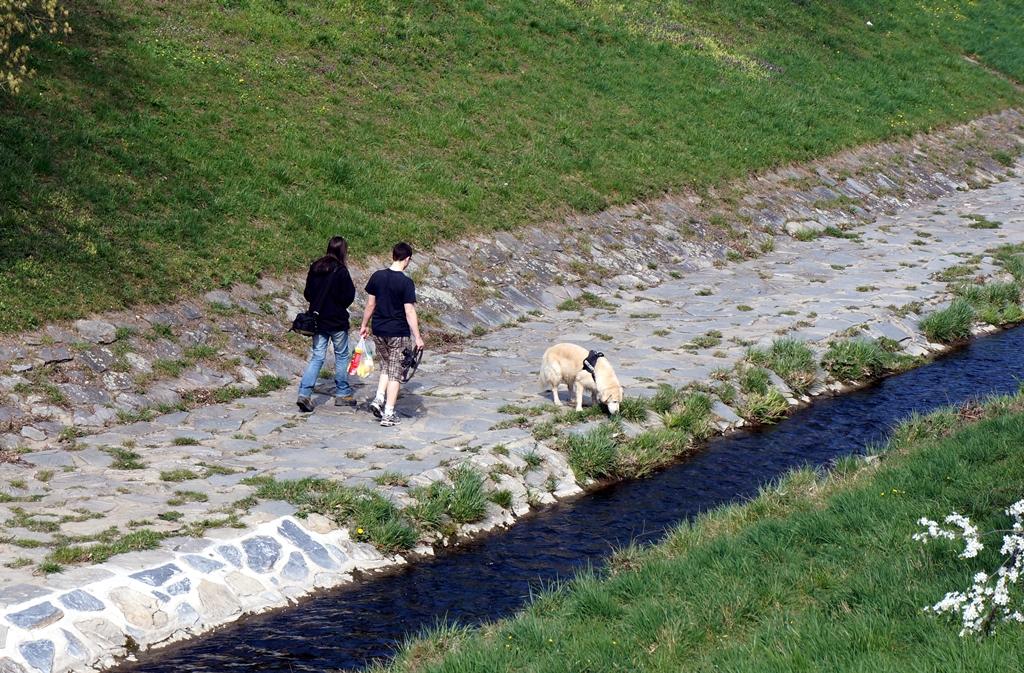 Spaziergänger mit Hund