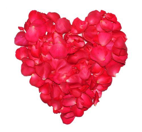 Valentinstag / Herz aus roten Rosenblüten