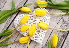 Valentinstag / Herz mit gelben Tulpen