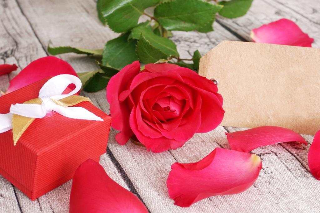 Valentinstag - Rote Rose mit Geschenk und Karte