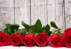 Valentinstag – Rote Rosen vor Holzwand 1