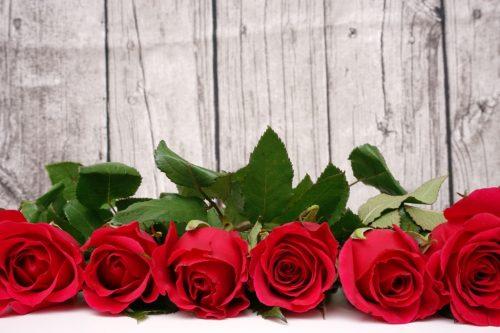 Valentinstag - Rote Rosen vor Holzwand