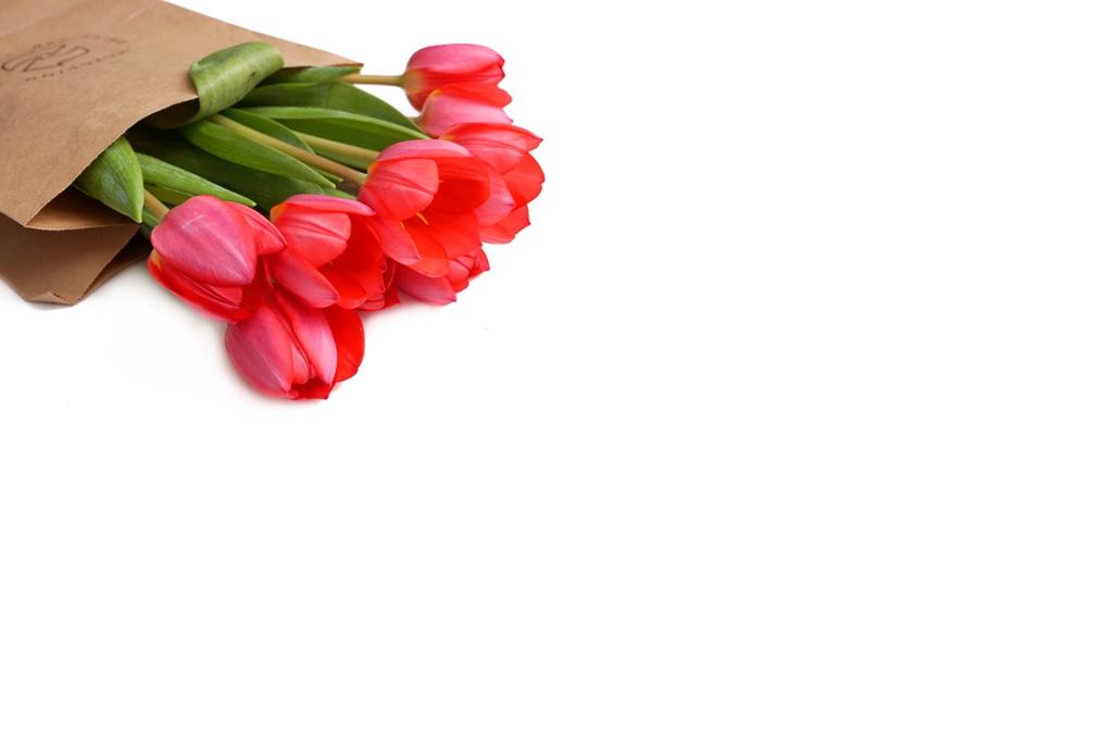 Valentinstag / Tulpen in Papiertüte