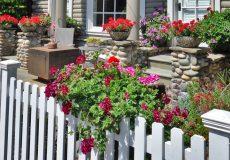 Blumen und Vorgarten