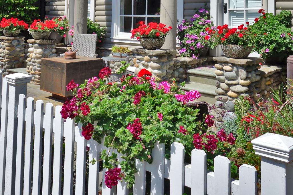 Blumen Und Vorgarten Lizenzfreie Fotos Bilder Kostenlos
