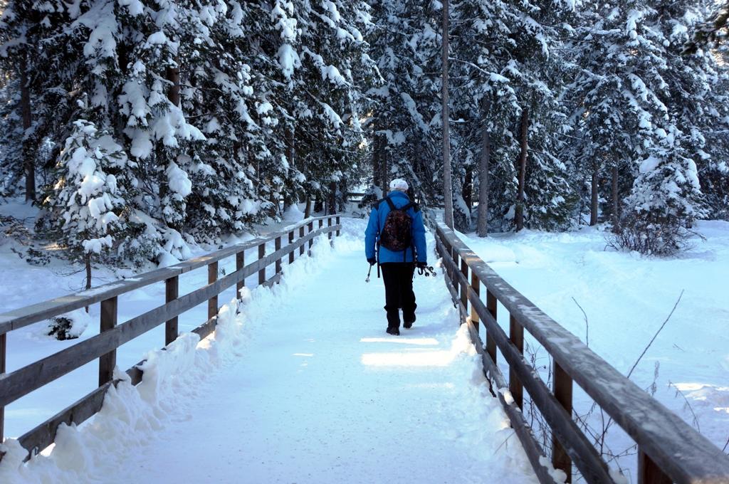 wanderer-im-schnee-natur