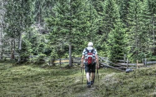 wanderer-senioren-wald