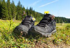 Wandern Wanderurlaub Wanderung