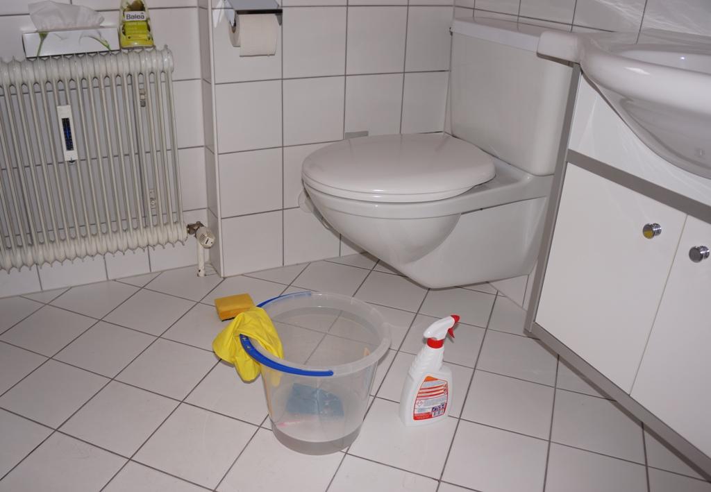 WC putzen