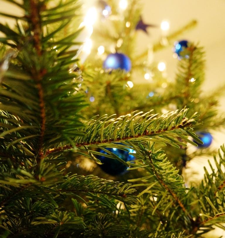 Christbaum Weihnachtsbaum 2
