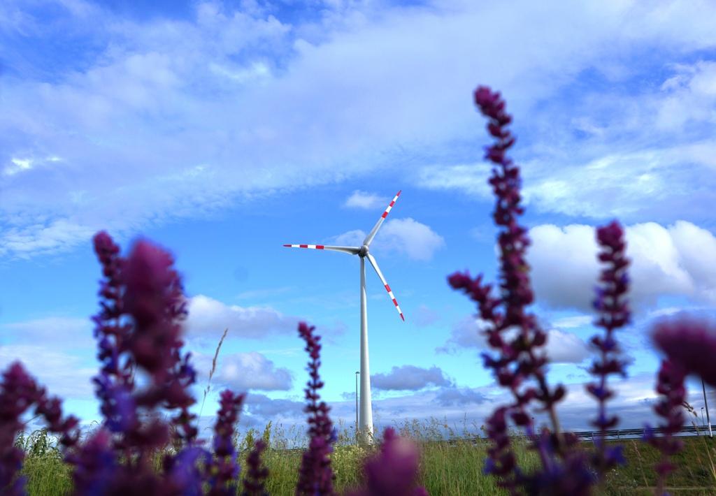 Windräder mit Blumen