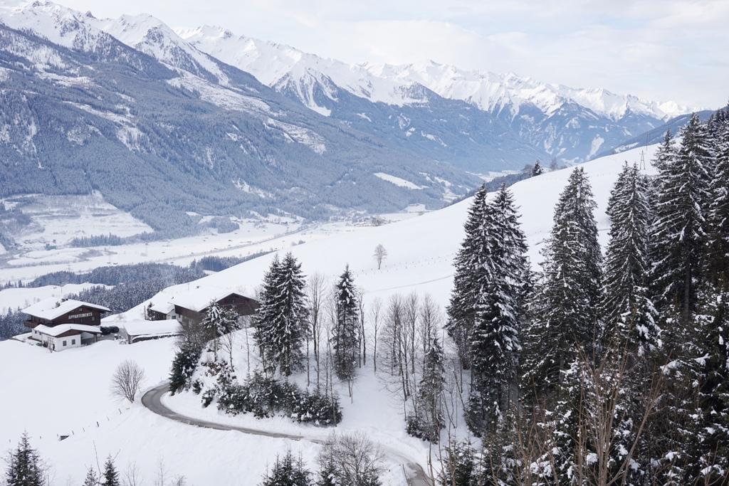 Winter, Schnee, Natur
