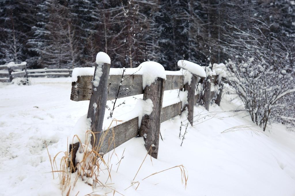 Winteridylle Schnee