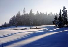 Winterlandschaft Natur Langlaufen