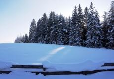 Winterlandschaft Wald