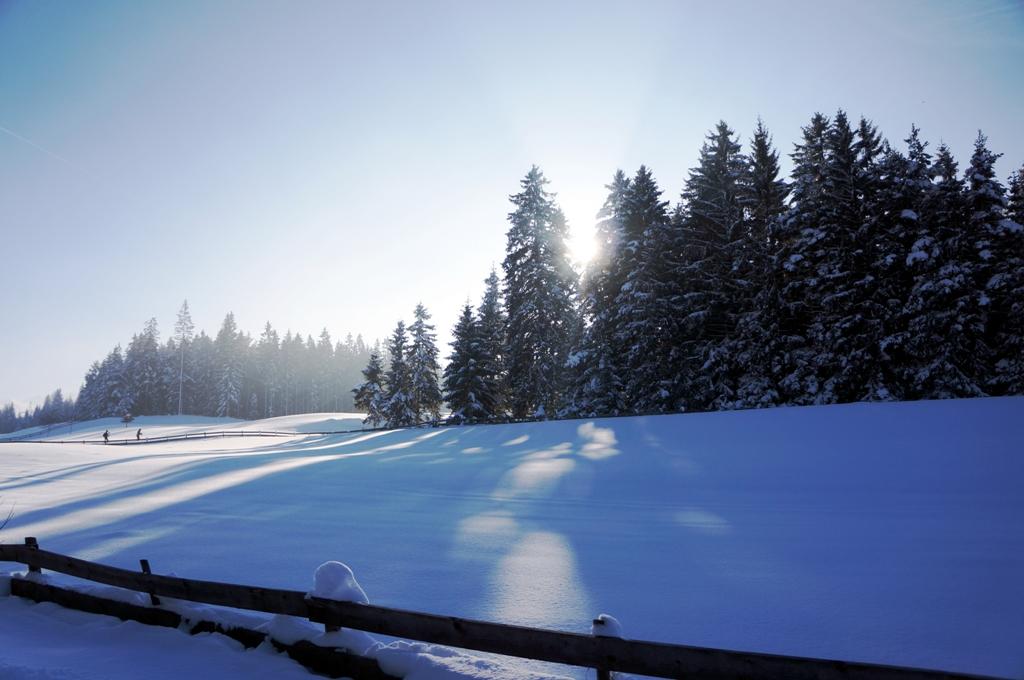 Winterlandschaft Österreich Natur