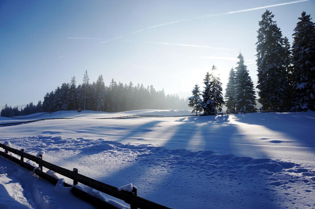 winterlandschaft mit schnee lizenzfreie fotos bilder. Black Bedroom Furniture Sets. Home Design Ideas