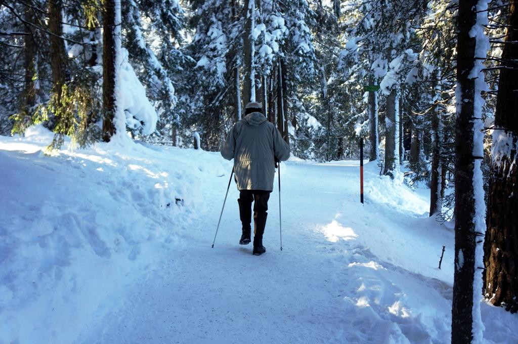 Winterwanderung in der Natur