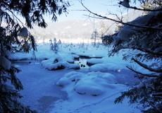 Gefrorener See im Winter