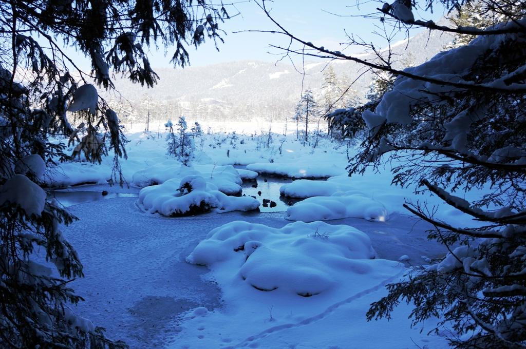 zugefrorener-see-winter
